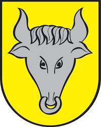 herb Dynowa